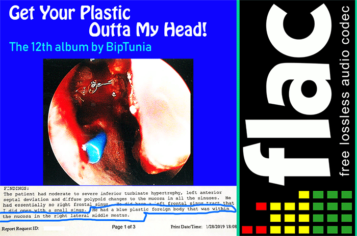 "Lossless FLAC 24-bit legal torrent of BipTunia album ""Get Your"