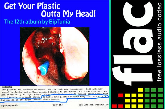"""Lossless FLAC 24-bit legal torrent of BipTunia album """"Get"""